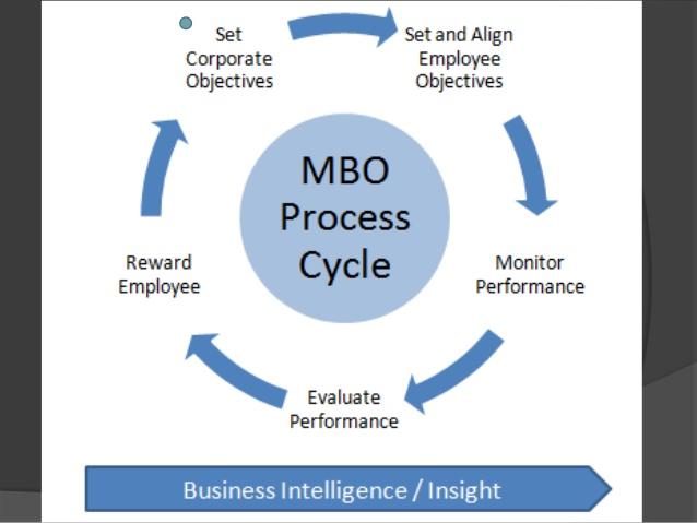 mbo cycle